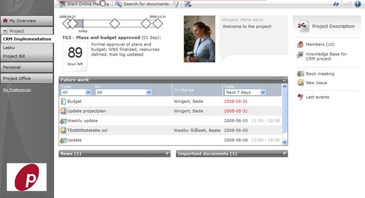 Exempel från projectplace.se