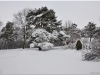 2010-02-20_01