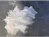 2010_01_is-konst_08