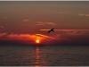 2012-07-25_21-27_dsc_6742