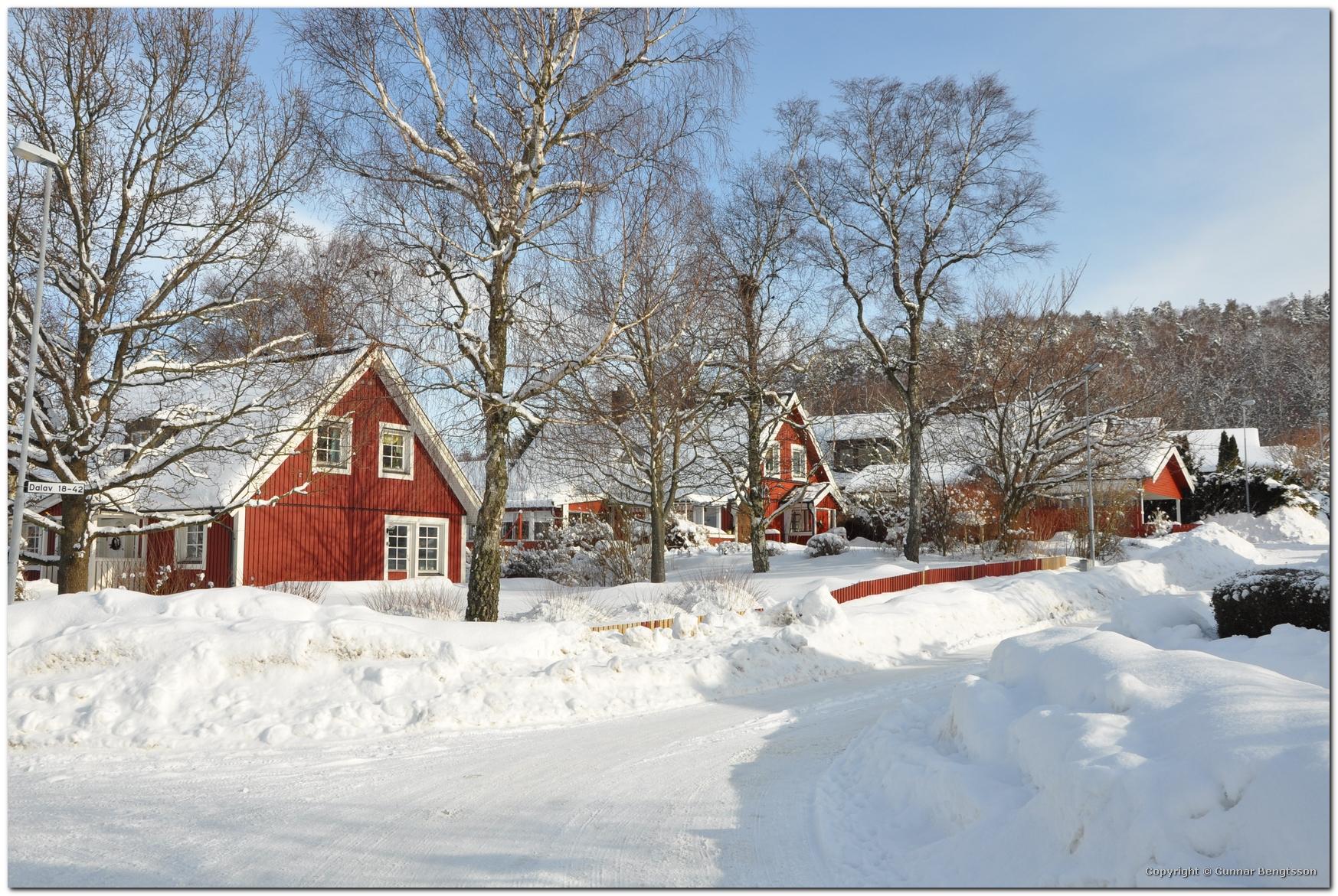 2010-02-24_15